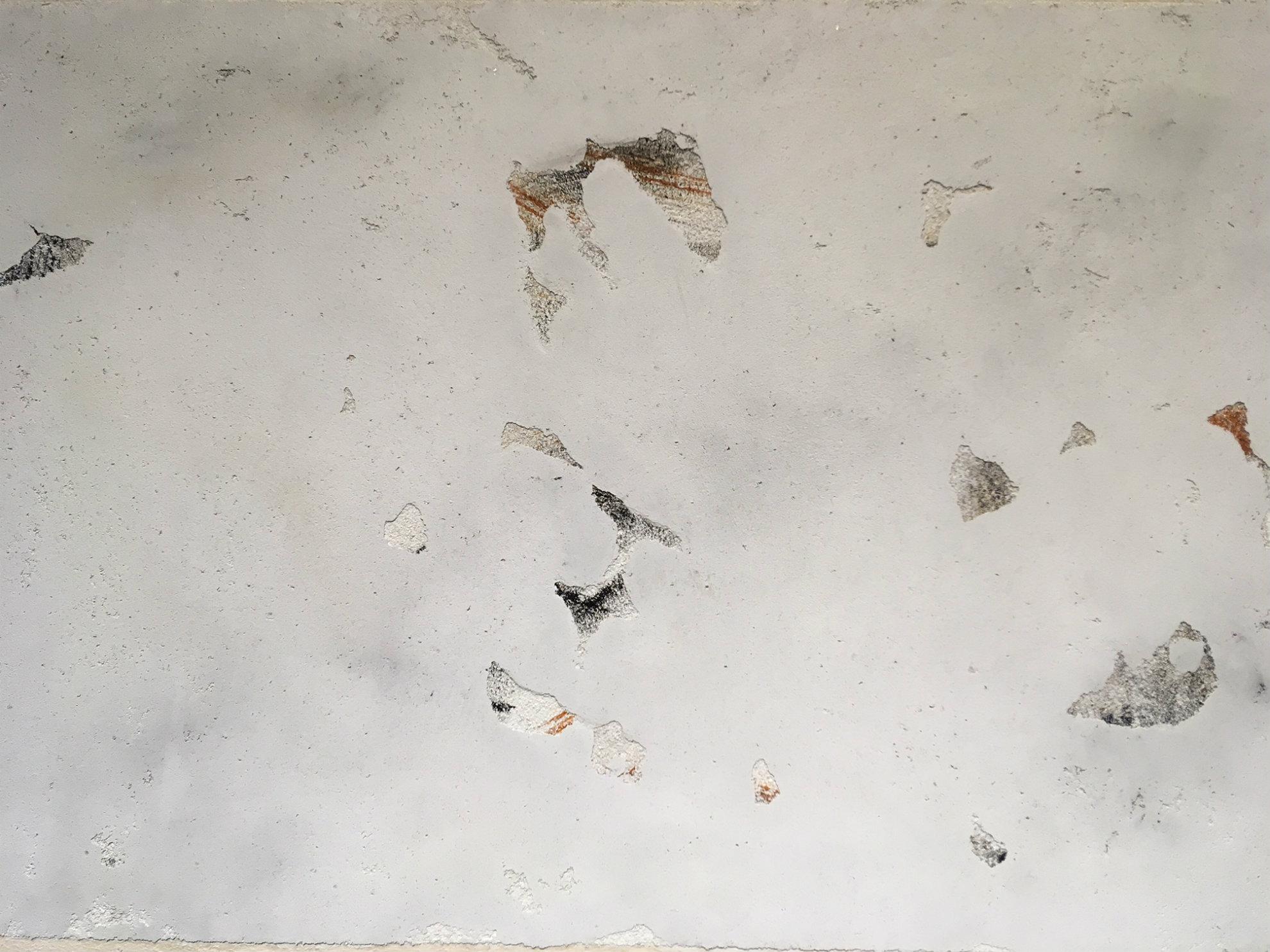 Sample of concrete paint